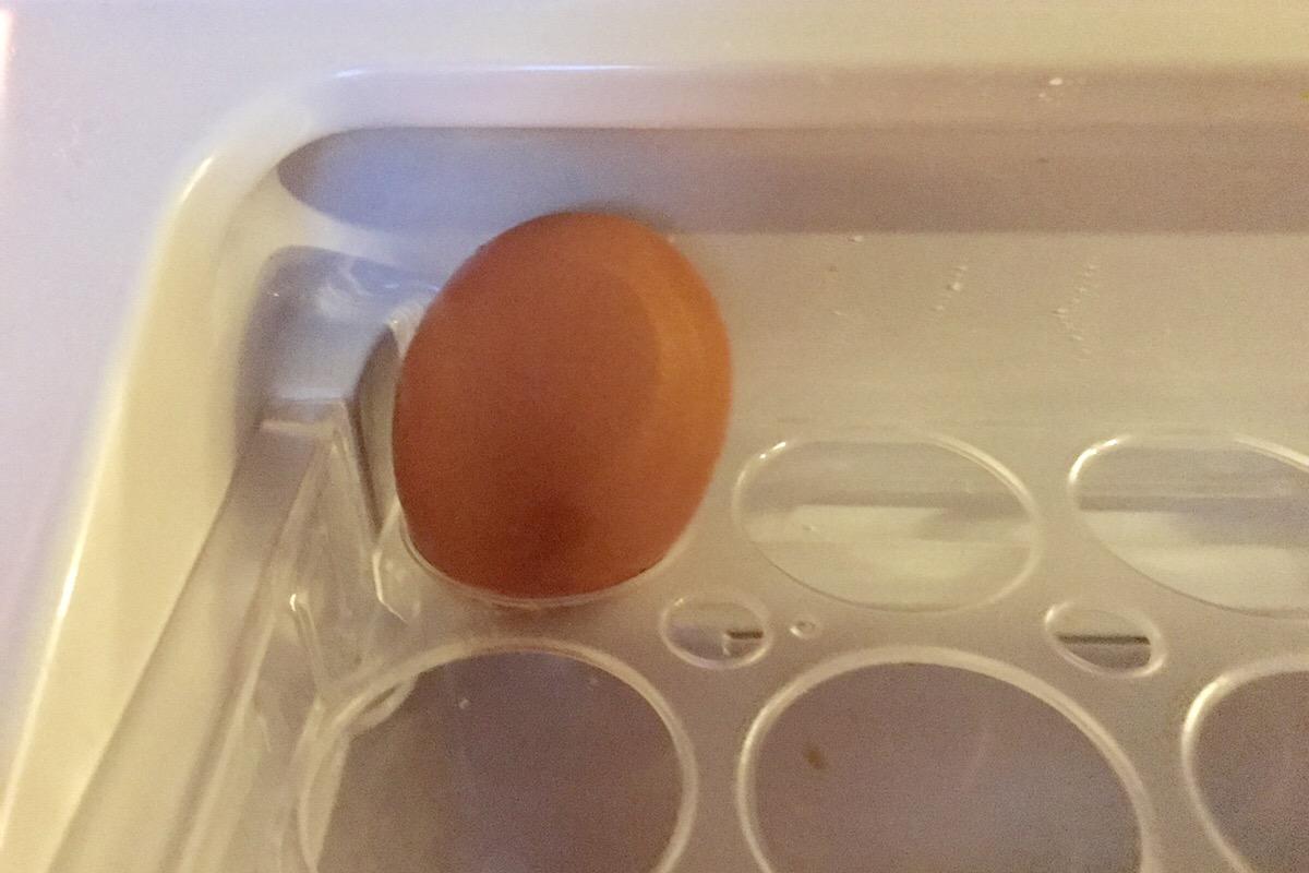 奇跡の一つ卵