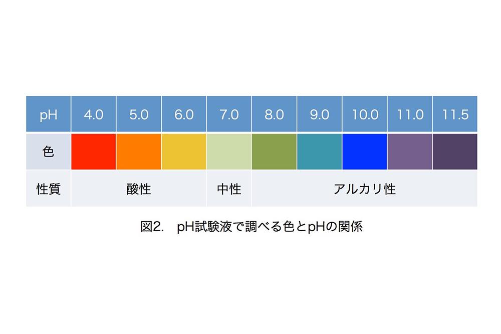 色の変化の目安
