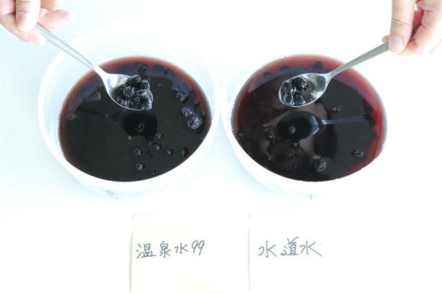 【温泉水99】黒豆煮込み比較