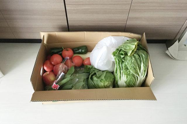 どっさり野菜はひとりには困る!!