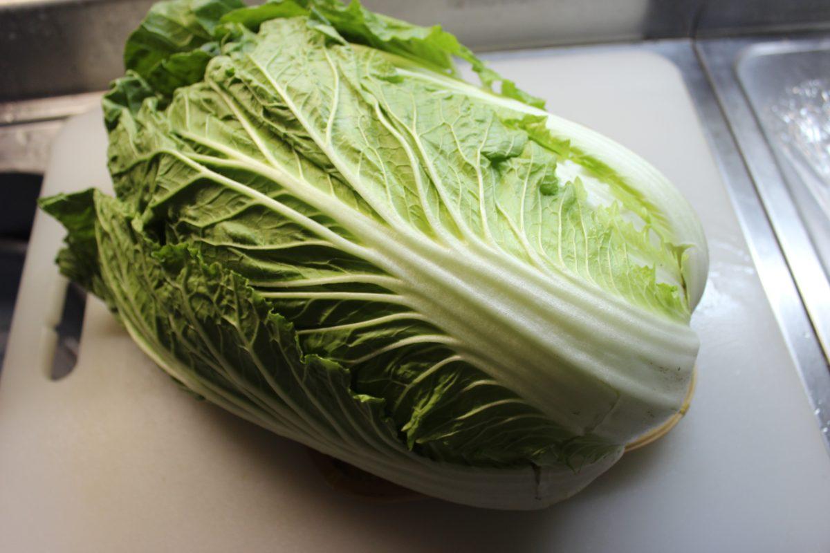 【まるっと使い切り】冬野菜白菜!